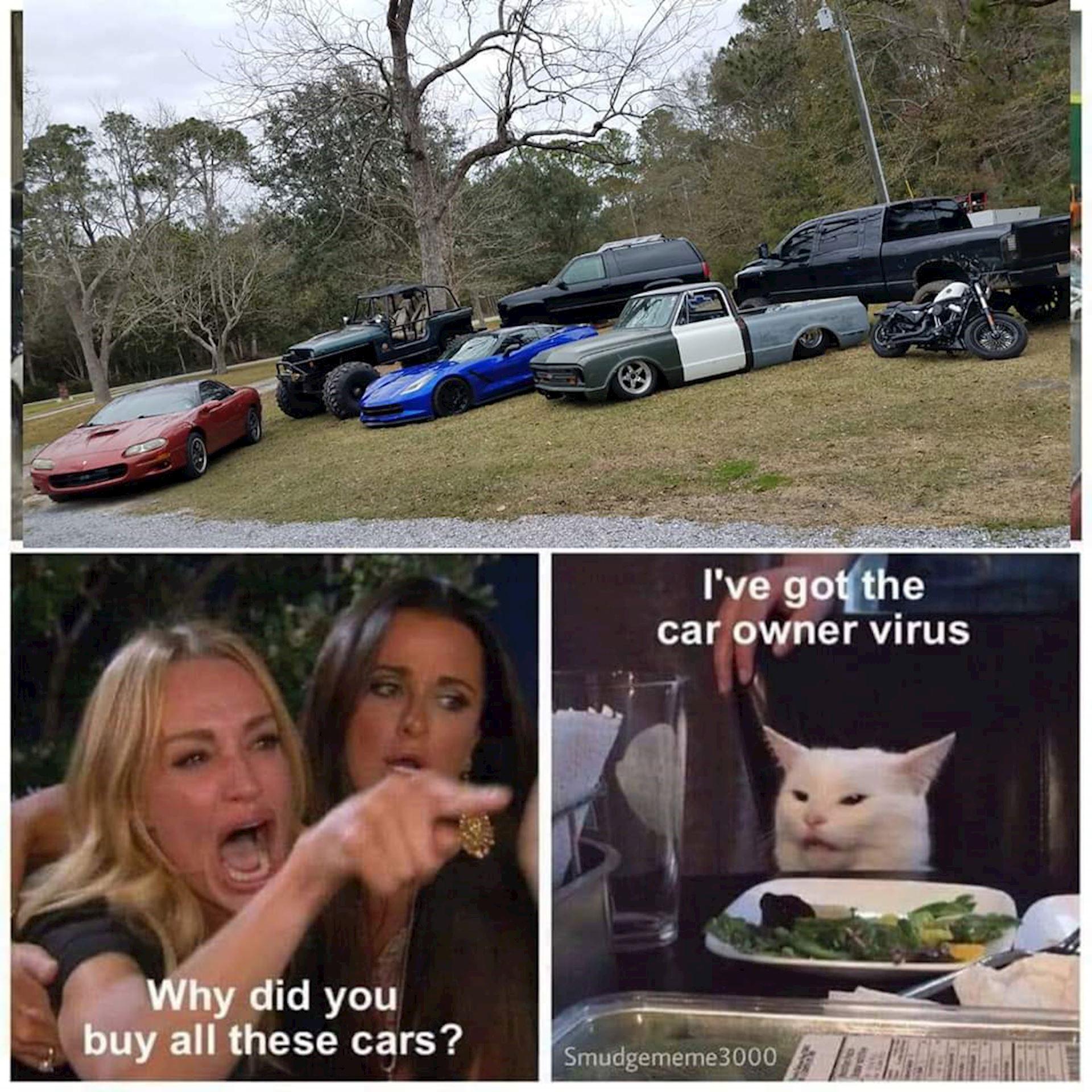 Get the Car owner virus!