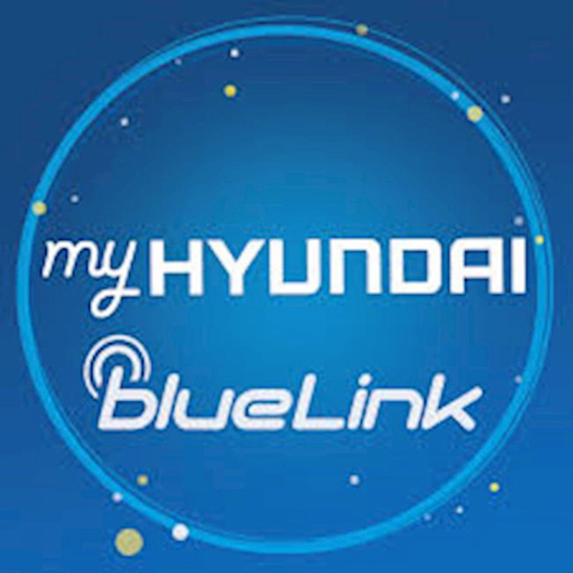 Blue Link Login